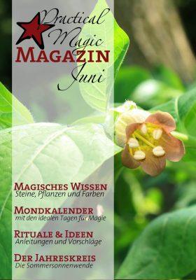 Inhaltsangabe Ausgabe Januar