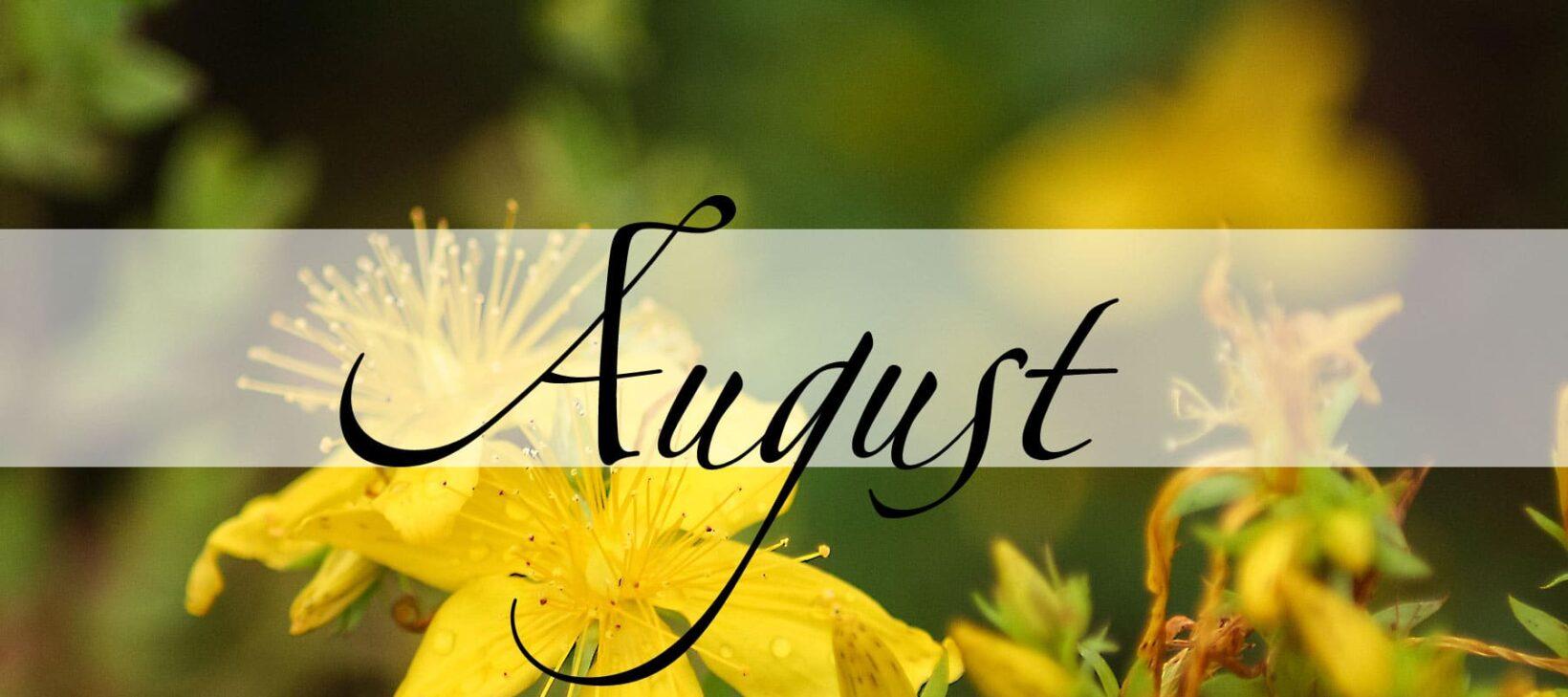 Der August in der Magie - Magie der Monate