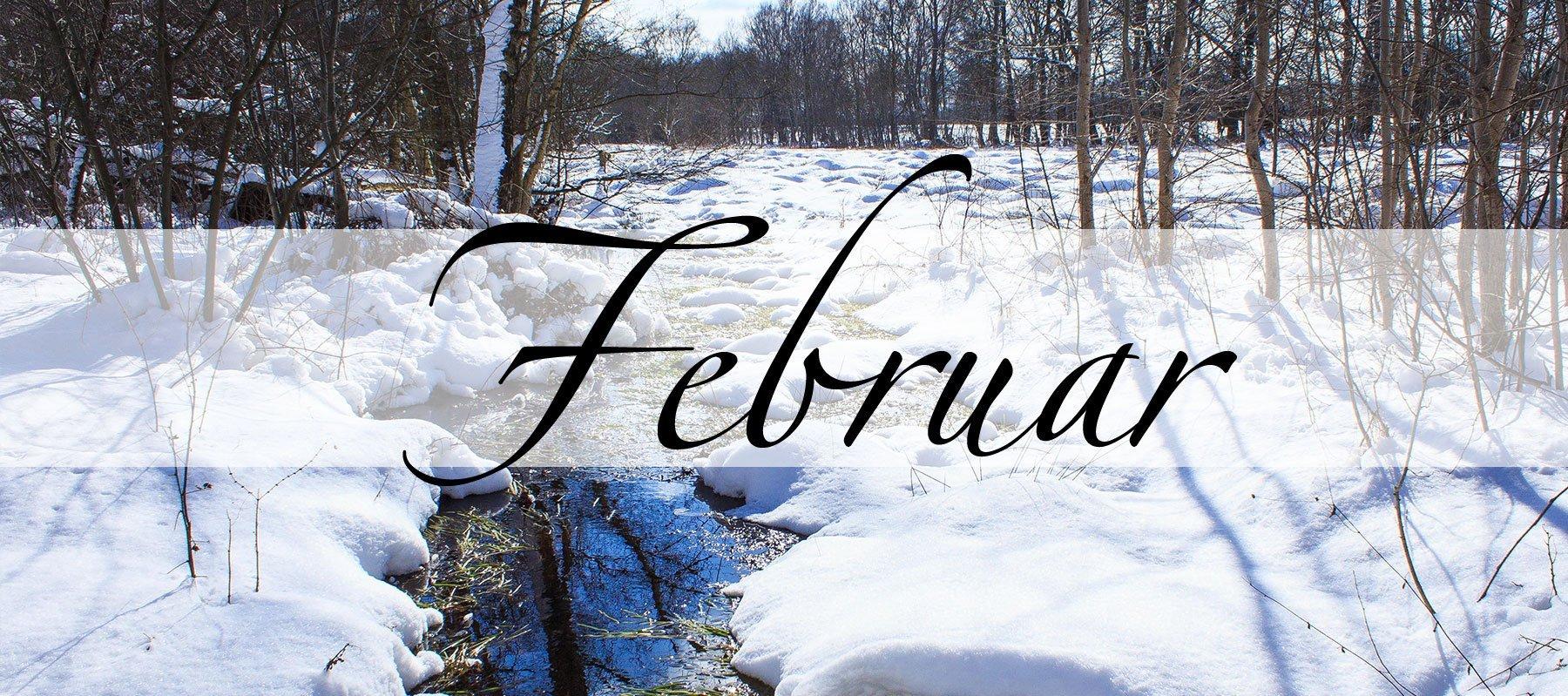 Februar Bilder