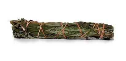 Mugworth Indianischer Beifuß Smudge Räucherwerk