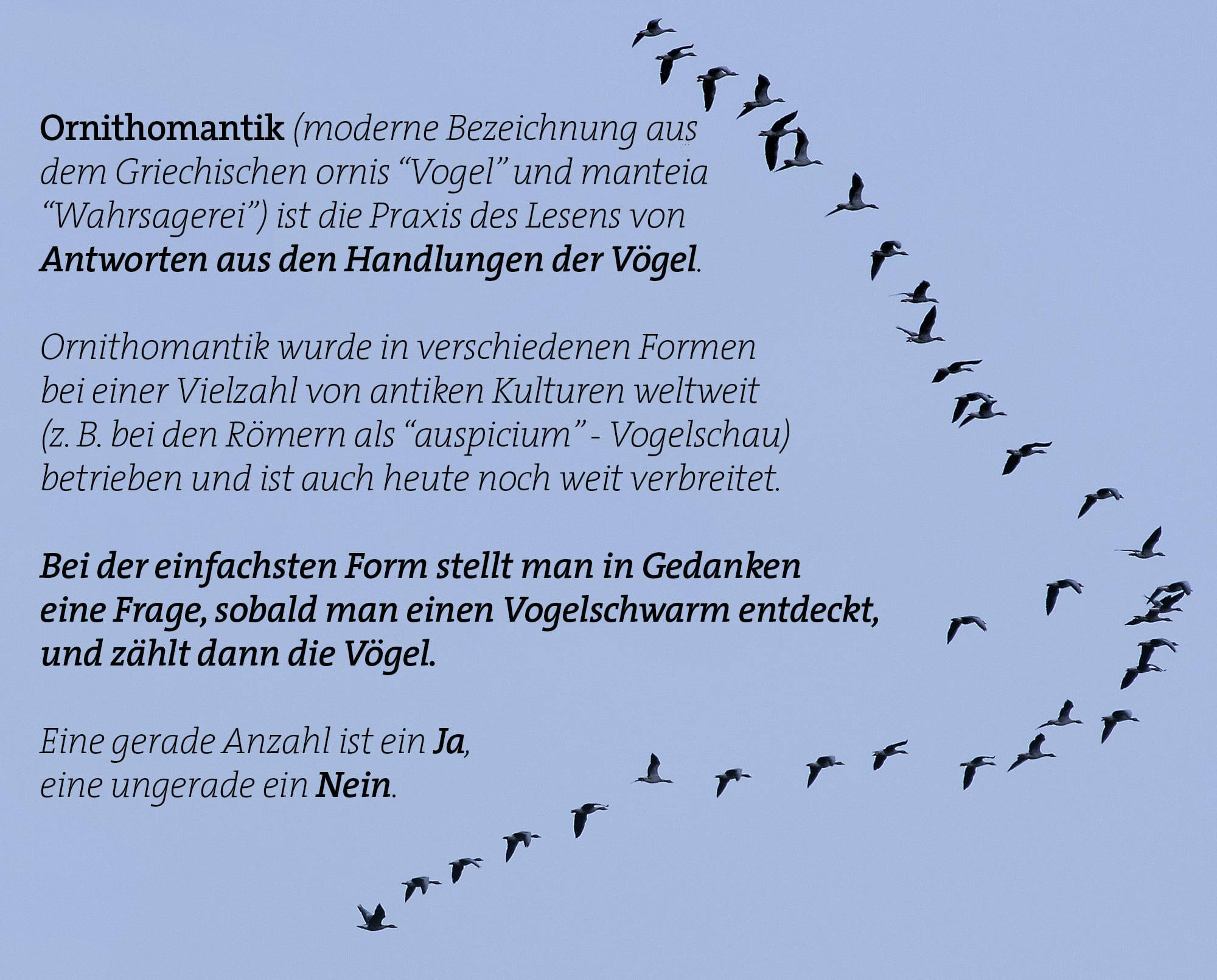 Ornithomantik - Wahrsagen mit Vögeln