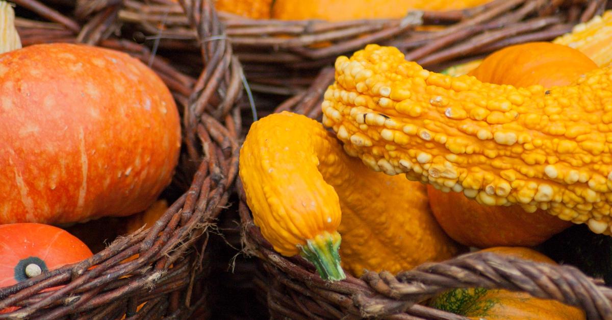 Samhain Halloween Kürbis