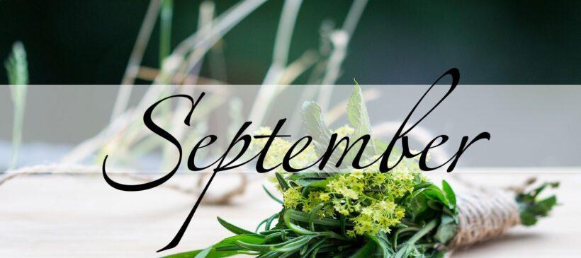 Der September in der Magie - Magie der Monate - oben