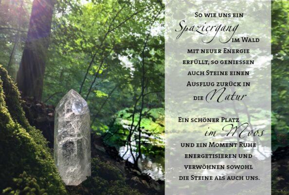So wie uns ein Spaziergang im Wald mit neuer Energie erfüllt, so genießen auch Steíne einen Ausflug zurück in die Natur. Ein schöner Platz im Moos und ein Moment Ruhe energetisieren und verwöhnen sowohl die Steine als auch uns.