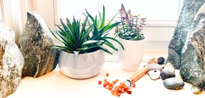 Kraftsteine für Pflanzen