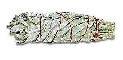 Shamanic White Sage Smudge (groß) Salbei, Indianersalbei, weißer Salbei